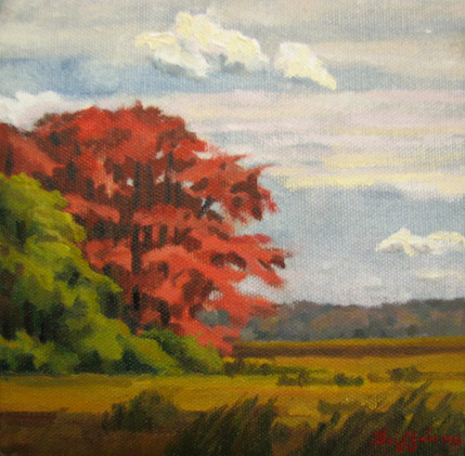 Red Marsh Maple :: Artwork by Patricia A. Griffin